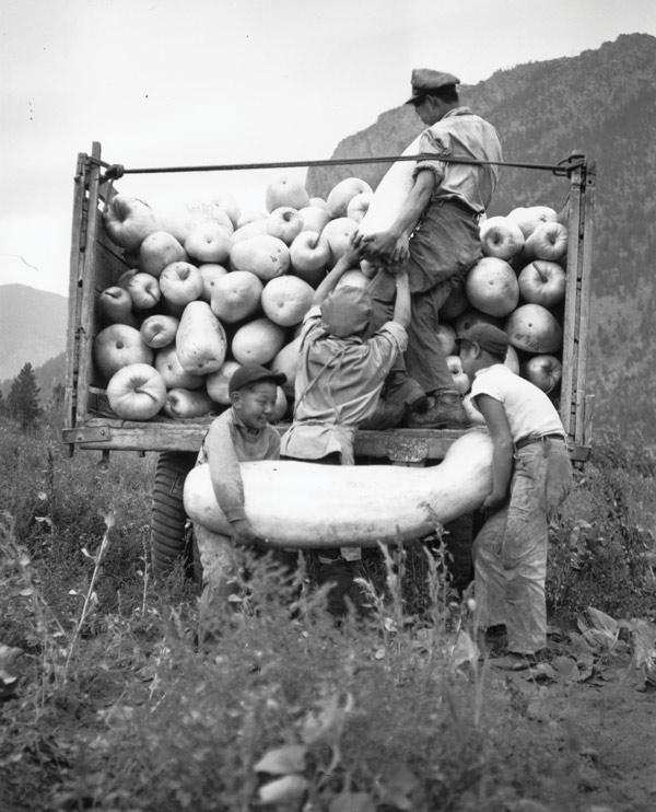 Zucca Melon Loading; Lillooet, BC. NNM 1995.140.1.12.a-b.